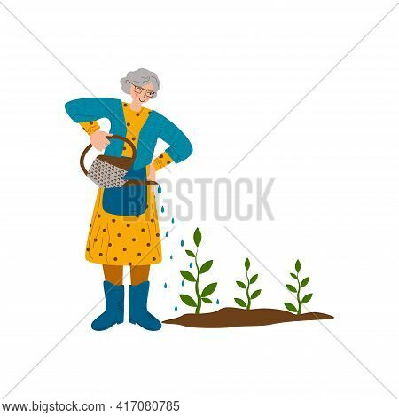 Old Woman Is Watering Plants. A Hobby Is Gardening. The Joy Of Working Outdoors. Flat Style Vector I