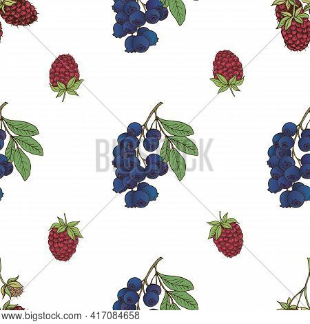 Vector Graphic Seamless Pattern With Blue Berry-04