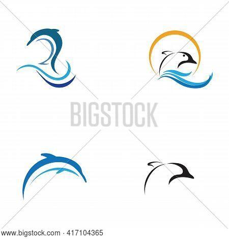 Dolphin Logo Template Vector. Dolphin Jumping Logo Design Concept.