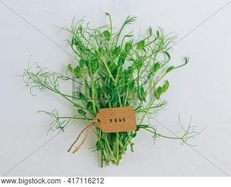 Pea Microgreens On A White Background. Healthy Food Concept