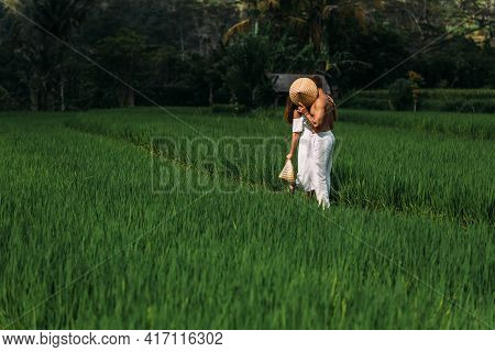 A Man And A Woman Among The Rice Terraces. A Couple In Love Is Traveling In Asia. A Man And A Woman
