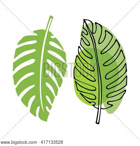 Tropical Leaves On White Background Clipart. Doodle And Flat Sketch Illustration. Green Leaves Of Ph