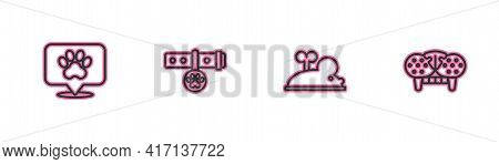 Set Line Location Veterinary Hospital, Clockwork Mouse, Collar With Name Tag And Cat Tooth Icon. Vec