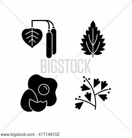 Intolerance For Allergen Black Glyph Icons Set On White Space. Birch Pollen. Nettle Leaf. Cracked Eg