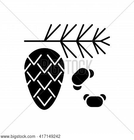 Cedar And Pine Tree Pollen Black Glyph Icon. Branch With Needles, Fir Cone. Common Seasonal Allergen