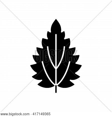 Nettle Black Glyph Icon. Alternative Medicine. Herbal Ingredient For Homeopathy. Common Toxic Allerg