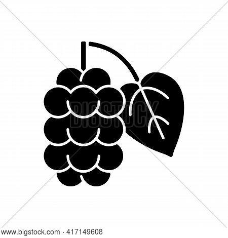 Mulberry Black Glyph Icon. Morus Fruit, Blackberry On Branch. Food Ingredient. Botanical Allergen. A