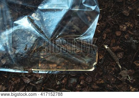 Abandoned Cellophane Bag In The Forest, Environmental Pollution. Environmental Concept. Rejection Of