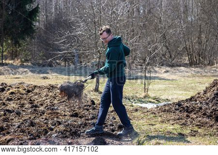 A Man With A Pitchfork Fertilizes His Farm Beds With Organic Fertilizer In An Early Sunny Spring. Ma