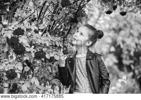 Best Day Ever. Female Fashion Salon. Little Beauty In Blossoming Garden. Park Jasmine Flower. Beauti
