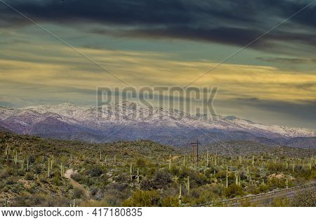 Arizona Desert Landscape With Saguaro Cactus At Sunset With Snow Covered Mountains Near Phoenix, Ari