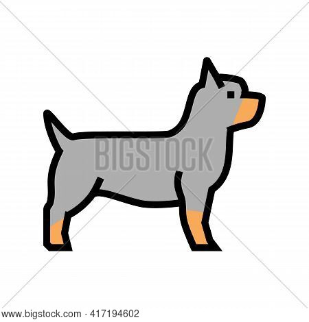 Yorkshire Terrier Dog Color Icon Vector. Yorkshire Terrier Dog Sign. Isolated Symbol Illustration