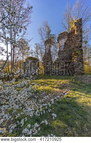 Chlum ruins from the 13th century near Zbysov, Central Bohemia, Czech Republic