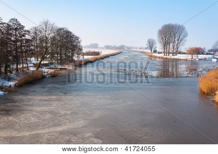 Dutch polder landscape in winter with a frozen river and ducks swimming in the holes. poster
