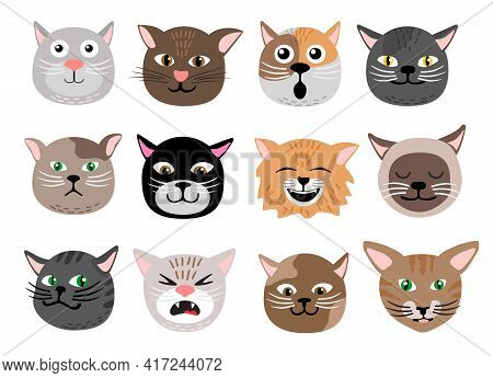 Cute Cats Face Emotions. Funny Funny Cat Characters Faces, Animals Emotion Set, Happy And Angry, Sad