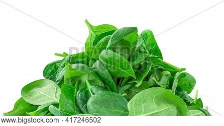 Spinach Leaves Isolated On White Background. Green Spinach Boarder Or Frame, Close Up