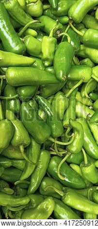 Tasty And Delicious Green Chilli Fresh And Healthy Food Lunch Dinner Breakfast Organic And Natural I