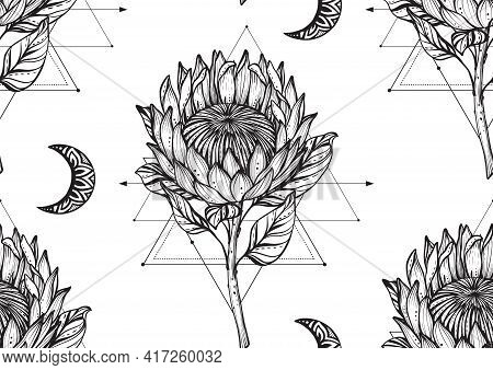 Vector Beautiful Seamless Pattern. Romantic Elegant Endless Background With Hand Drawn Protea Flower