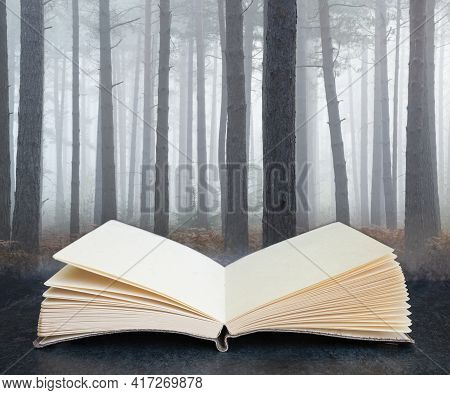 Autumn Fall Landscape Foggy Morning In Pine Forest Coming Out Of Pages In Imaginary Book
