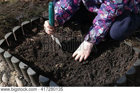 Kid Hands Dig In The Ground, Loosen The Ground For Planting Seedlings.  Learning Gardening Skills.