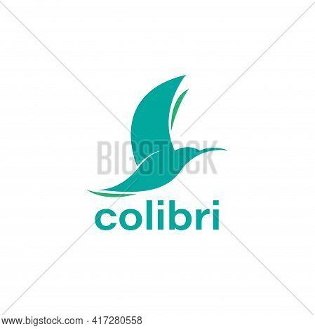 Colibri Animal Design Logo Vector. Colibri Bird Vector