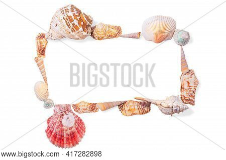 Rectangular Frame From Seashells, Molluscs And Seashells On White Isolated Background. Sea Backgroun