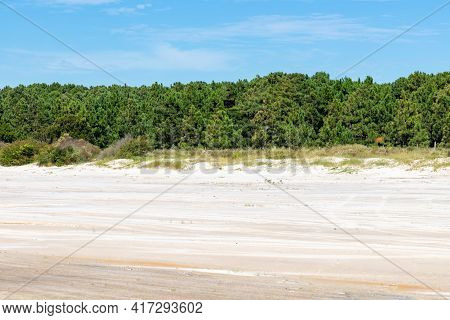 Sand And Trees With Blue Sky In Lagoa Dos Barros Lake, Osorio, Rio Grande Do Sul, Brazil