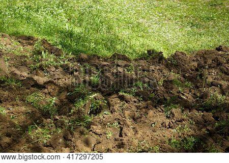 Bucharest, Romania - April 08, 2021: A Freshly Dug Green Ground, In A Garden In Bucharest.