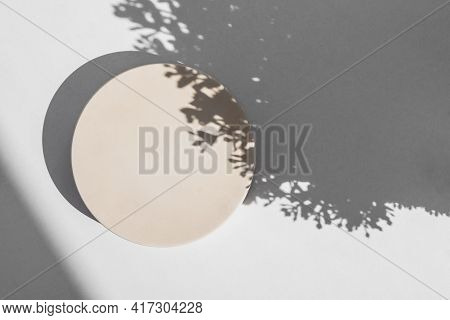 Abstract Minimal Scene With Geometrical Form. Cylinder Podium On White Background With Floral Shadow