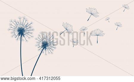 Flying Dandelion Flower Seeds Make A Wish Concept Background