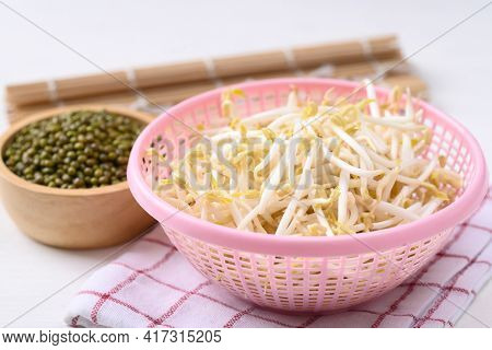 Fresh Mung Bean Sprouts In Pink Basket And Mung Bean Seeds, Organic Vegetables And Food Ingredients