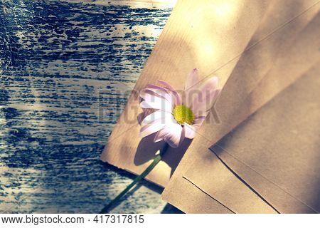Blurred Vintage Notepad Or Book With Summer Flower Chamomile. Nostalgic Vintage Background. Retro To