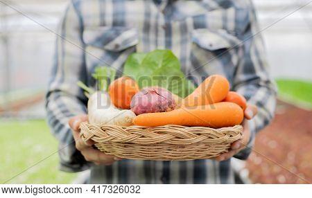 Farmer Holding A Basket Of Organic Vegetables.