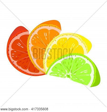 Orange, Lemon, Lime, Grapefruit. Citrus Slices. Vector.