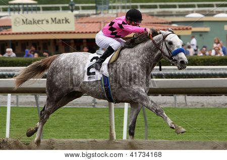 Flashback Wins The Robert B. Lewis Stakes