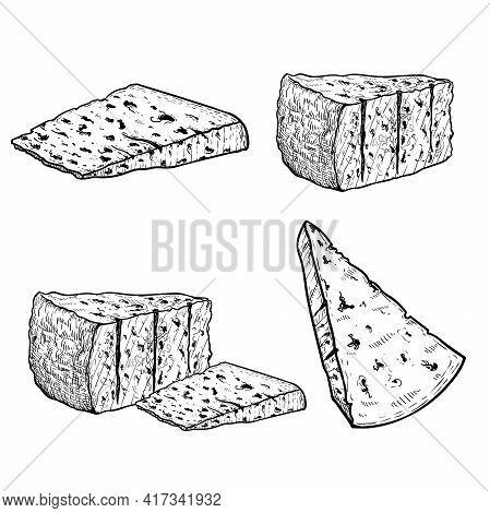 Italian Cheese Gorgonzola Set. Hand Drawn Sketch Style Drawings. Traditional Italian Blue Cheese Col