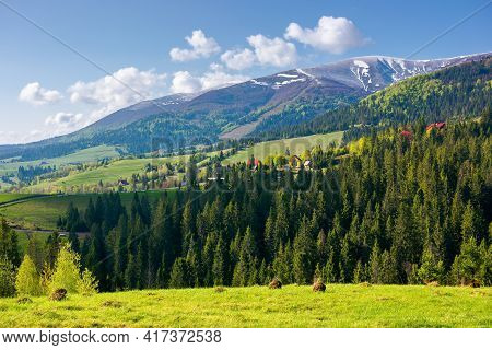 Countryside Landscape Of Carpathian Mountains. Wonderful Nature Scenery In Spring Time. Fluffy Cloud