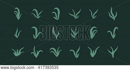 Set Of Silhouette Plants Seaweed Algae Aquatic Water Plant Grass For Aquarium. Isolated On Dark Vect