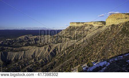 Lone Pine In Mesa Verde National Park, Colorado, Spring Time.