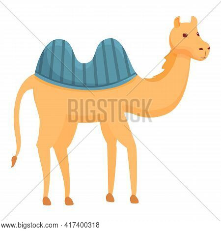 Egypt Camel Icon. Cartoon Of Egypt Camel Vector Icon For Web Design Isolated On White Background