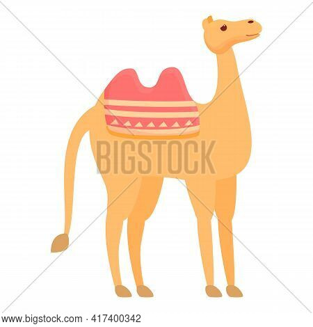 Exotic Camel Icon. Cartoon Of Exotic Camel Vector Icon For Web Design Isolated On White Background