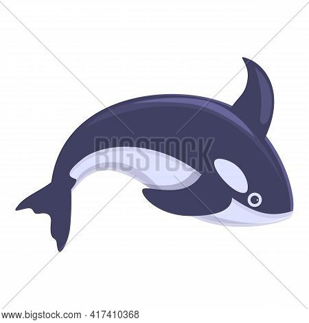 Killer Whale Animal Icon. Cartoon Of Killer Whale Animal Vector Icon For Web Design Isolated On Whit