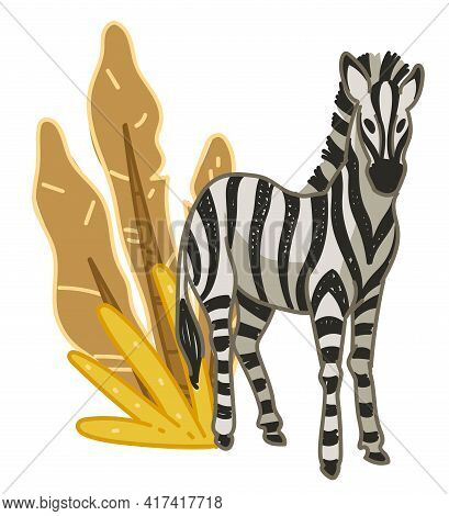 Zebra With Foliage Of Bushes, Flora And Fauna