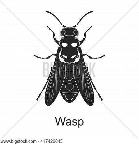 Wasp Vector Black Icon. Vector Illustration Pest Insect Wasp On White Background. Isolated Black Ill