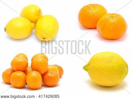 A Photo Collection Collage Of Tasty Fresh Citrus Fruit On White Background.