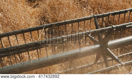 Closeup Of Cutter Bar Of A Combine Harvester In A Golden Wheat Field Ready To Cut The Ripe Wheat Cro