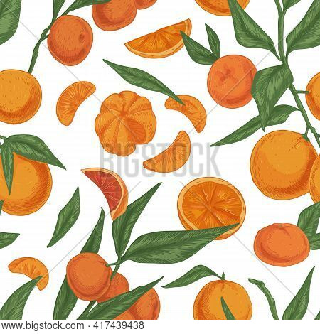 Seamless Citrus Pattern With Tangerine, Mandarin Or Clementine Branches On White Background. Endless