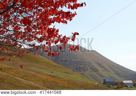 Rural Landscape In Mountains With Fields, Houses And Trees In Fall Foliage In Autumn. Caucasus Mount