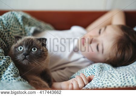 Cute Boy And His Cat Cuddling In The Bed At Morning. Child And His Cat At Home. Kids And Pets. Lovel