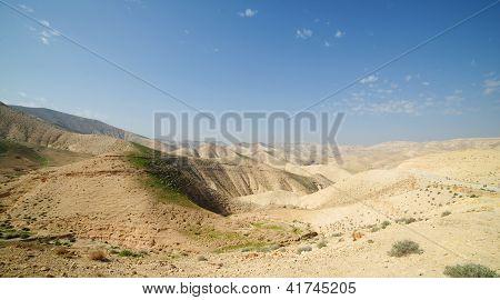 Wüstenlandschaft im Frühjahr